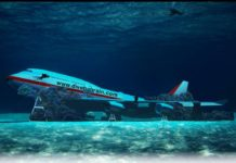 Bahrain Sinks Airplane for Under Water Theme Park