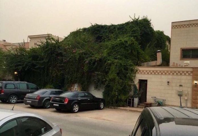 Heat Resistant House in Saudi Arabia