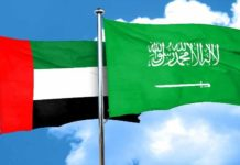 SAUDI ARABIA AND UAE JOINT VISA SOON