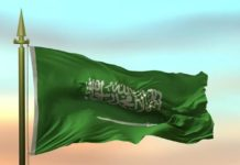 SAUDI ARABIA TO GRANT CITIZENSHIP TO PROFESSIONALS