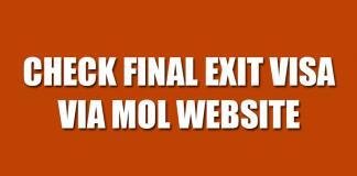 Check Final Exit Visa via MOL website